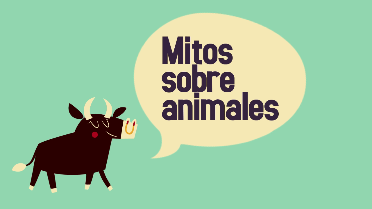 Mitos sobre animales
